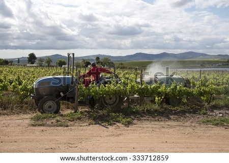 Spraying vines in the Stellenbosch region of South Africa - stock photo