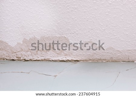 Spreading damp and rot on a ceiling due to a water leak - stock photo