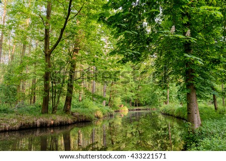 Spreewald in Germany