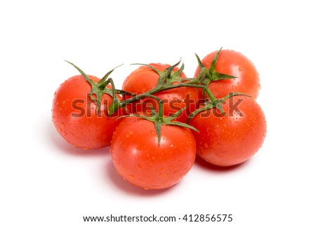 Sprig of red tomato with water drops on a white background