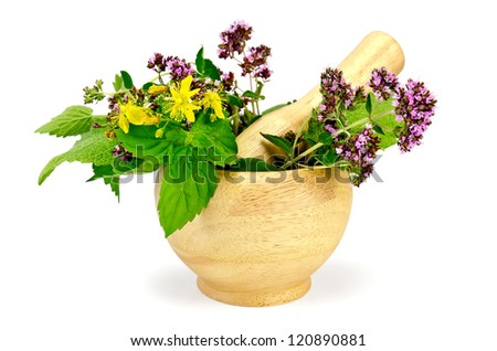 Sprigs of mint, lemon balm, oregano, tutsan, sage leaves in a wooden mortar isolated on white background - stock photo