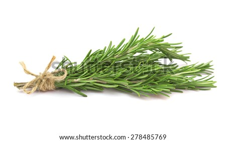 Sprigs of rosemary - stock photo