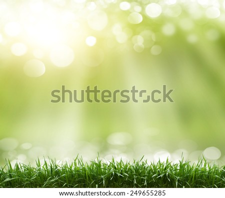 Spring abstract background - stock photo