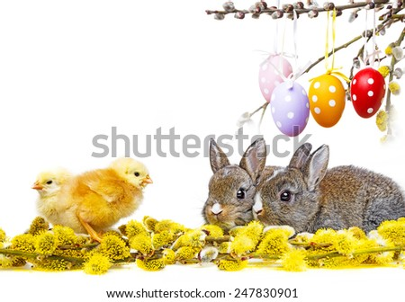 spring animals and easter eggs - stock photo