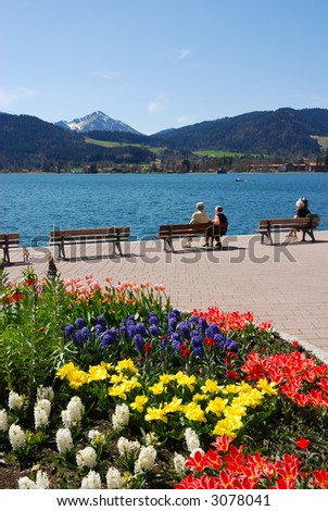 spring at a mountain lake