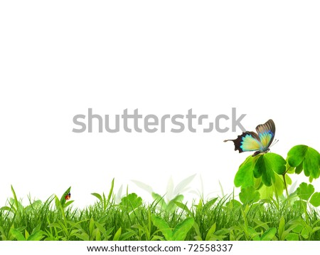 Spring background - stock photo
