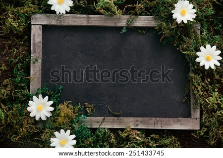 Spring background. Chalkboard with daisy flowers on wood - stock photo