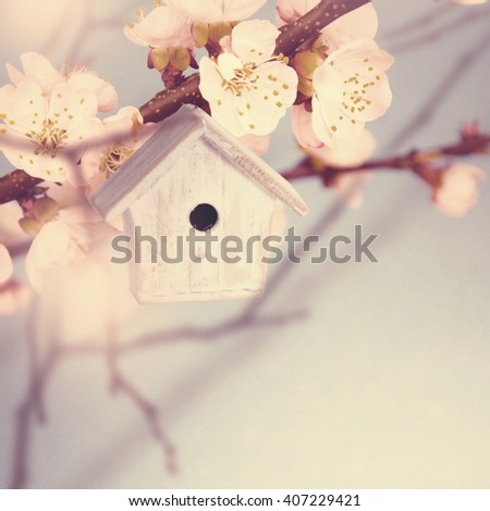 Spring background.Cute birdhouse in a tree. - stock photo