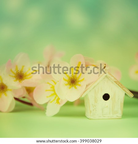 Spring background.Cute feeder from branch of the bloom. - stock photo