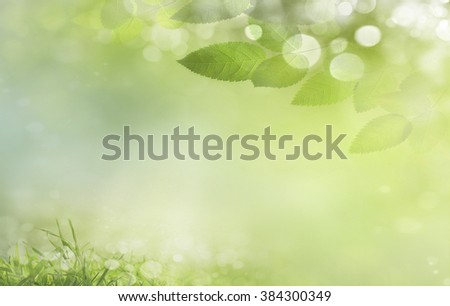 Spring background  de-focus - stock photo
