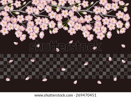 Spring. Background illustration of cherry blossoms. Night. / Japanese cherry blossom viewing events. Black.  Cherry blossom viewing. - stock photo