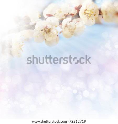 spring background, tender blur colors - stock photo