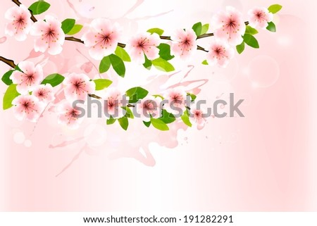 Spring background with blossoming sakura branches. Raster version - stock photo