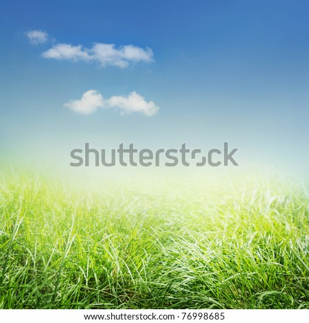 Spring background with grass and blue sky - stock photo