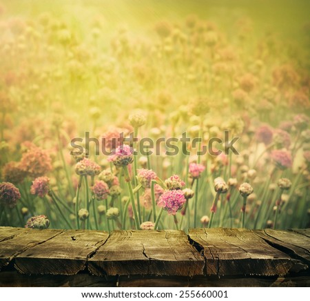 Spring background with tabletop. Flowers background. Wood table - stock photo