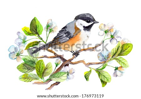Spring bird on blooming branch with green leaves and flowers. Watercolor painting. Hand drawn. - stock photo