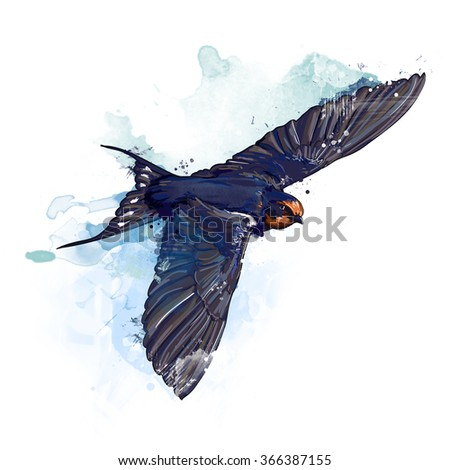 Spring bird. Watercolor swallow illustration. - stock photo
