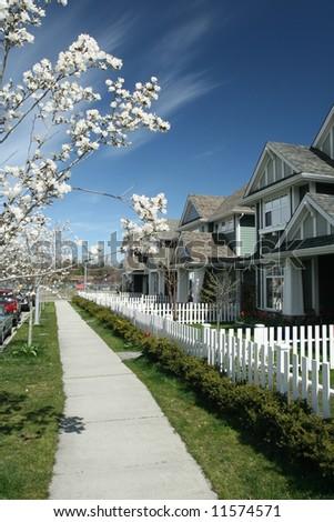 Spring Bloom in Suburban Neighborhood - stock photo