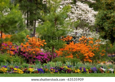 Spring bloom in the park in soft focus - stock photo