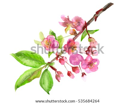 Spring blossom bloom branch pink flowers stock illustration spring blossom bloom branch with pink flowers leaves buds petals mightylinksfo