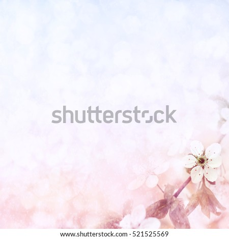 Spring blossom, selective focus, shallow DOF, toned, light and heart bokeh background, pastel and soft card