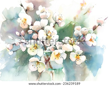 Spring Blossoms Flowers hand painted watercolor - stock photo