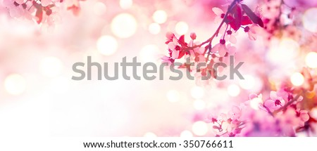 Spring border or background art with pink blossom. Beautiful nature scene with blooming tree and sun flare. Sunny day. Spring flowers. Beautiful Orchard. Abstract blurred background. Springtime - stock photo