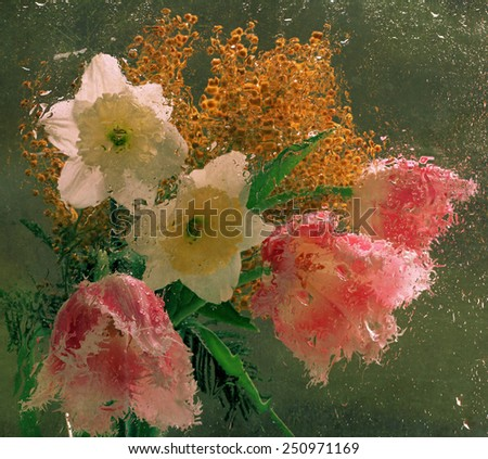 Spring bouquet from narcissuses, tulips and a mimosa behind glass the filled in rain