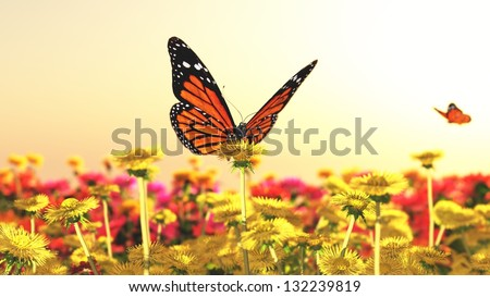 Spring butterfly flowers sunset - stock photo