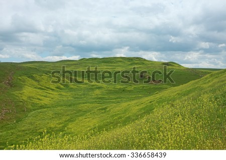 Spring cloudy landscape with yellow wild flowers field. Hills in Crimea. - stock photo