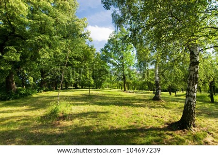 Spring countryside - meadow, trees and blue sky