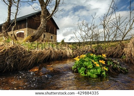 Spring creek with buttercups in the background barn - stock photo