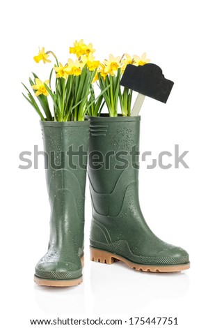 Spring daffodils in wellington boots with garden sign - stock photo