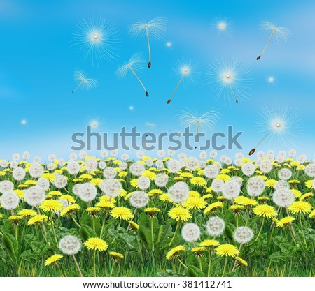 Spring dandelion flowers and light blue sky. Dandelion garden landscape. Digital Illustration. Spring Holiday background with yellow dandelion flowers and sky. For Art, web, print graphic design. - stock photo