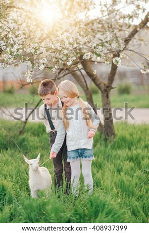 spring day the little blond girl with a boy playing with a little white goat in lush garden - stock photo