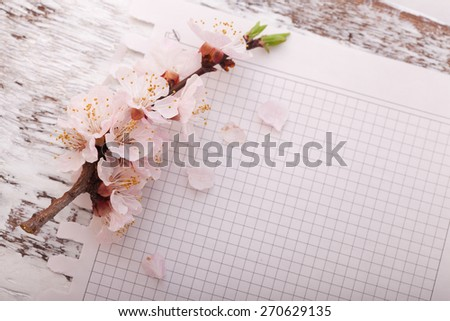 Spring declaration of love. Flowering branch cherry and piece of paper on wooden background.