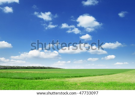 spring field and the blue sky - stock photo