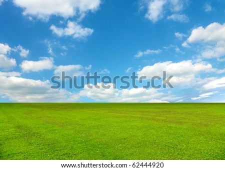 spring field covered by a grass - stock photo