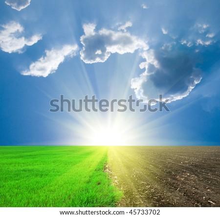 spring fields under a sun - stock photo