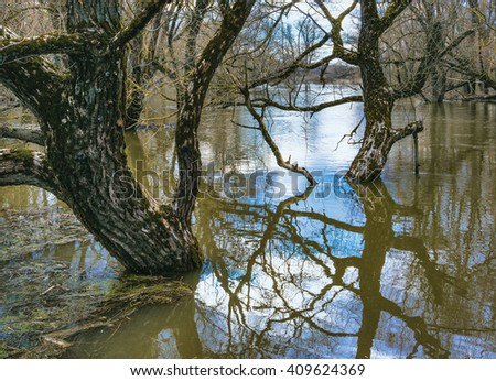 Spring flood - stock photo