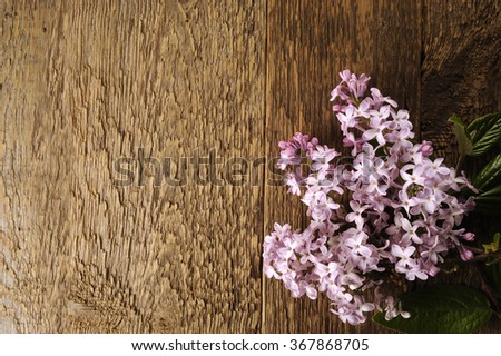 Spring flower twig purple lilac on a wooden table - stock photo