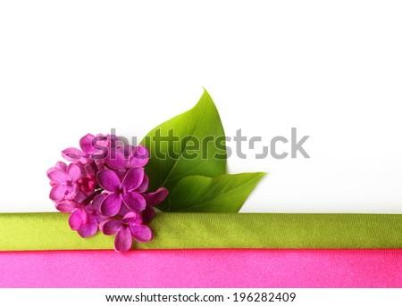 Spring flower, twig purple lilac with leaf. Syringa vulgaris. - stock photo