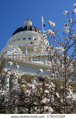 Spring Flowers at the California State Capitol - stock photo