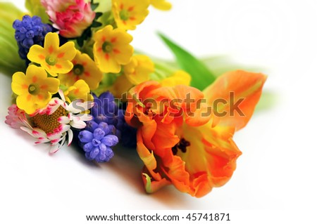 Spring flowers bouquet - stock photo