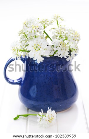 Spring flowers in vase on the table - stock photo