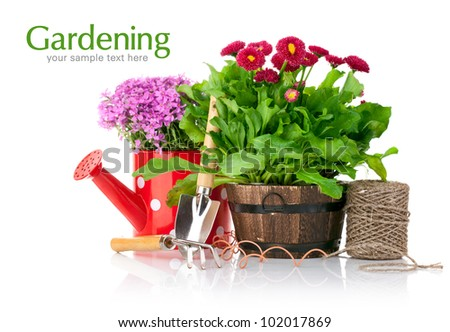 spring flowers with garden tools isolated on white background - stock photo