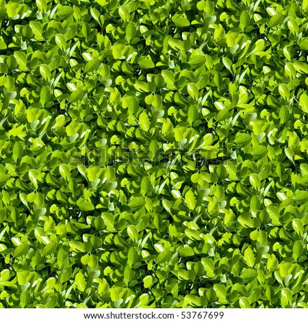 spring foliage seamless pattern. - stock photo