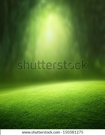 Spring forest  background - stock photo