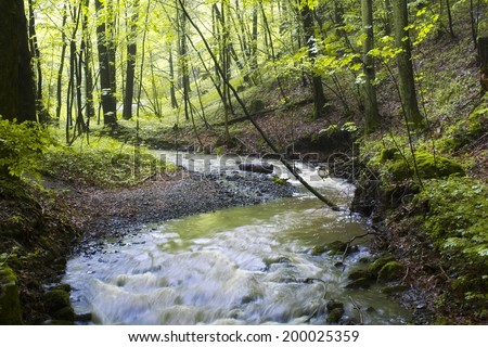 spring forest creek - stock photo
