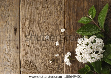 spring fresh flowers on a wooden table background - stock photo